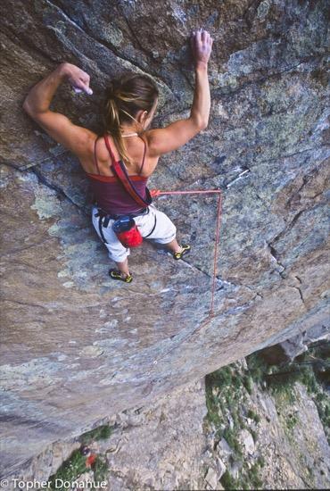 1-heidi-climbing-wasp
